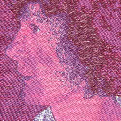 Selfie woven sein lampas weave - 4 wefts